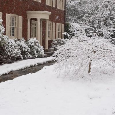 Gary Mitchell, snow