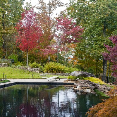 diving board in pool with stone wall surroundings and fall trees